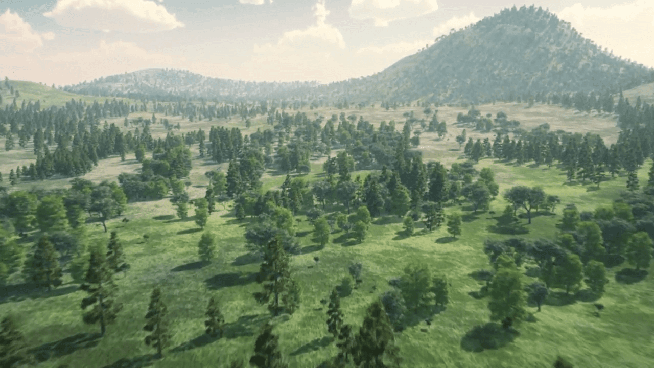 Forests - 3D Animation