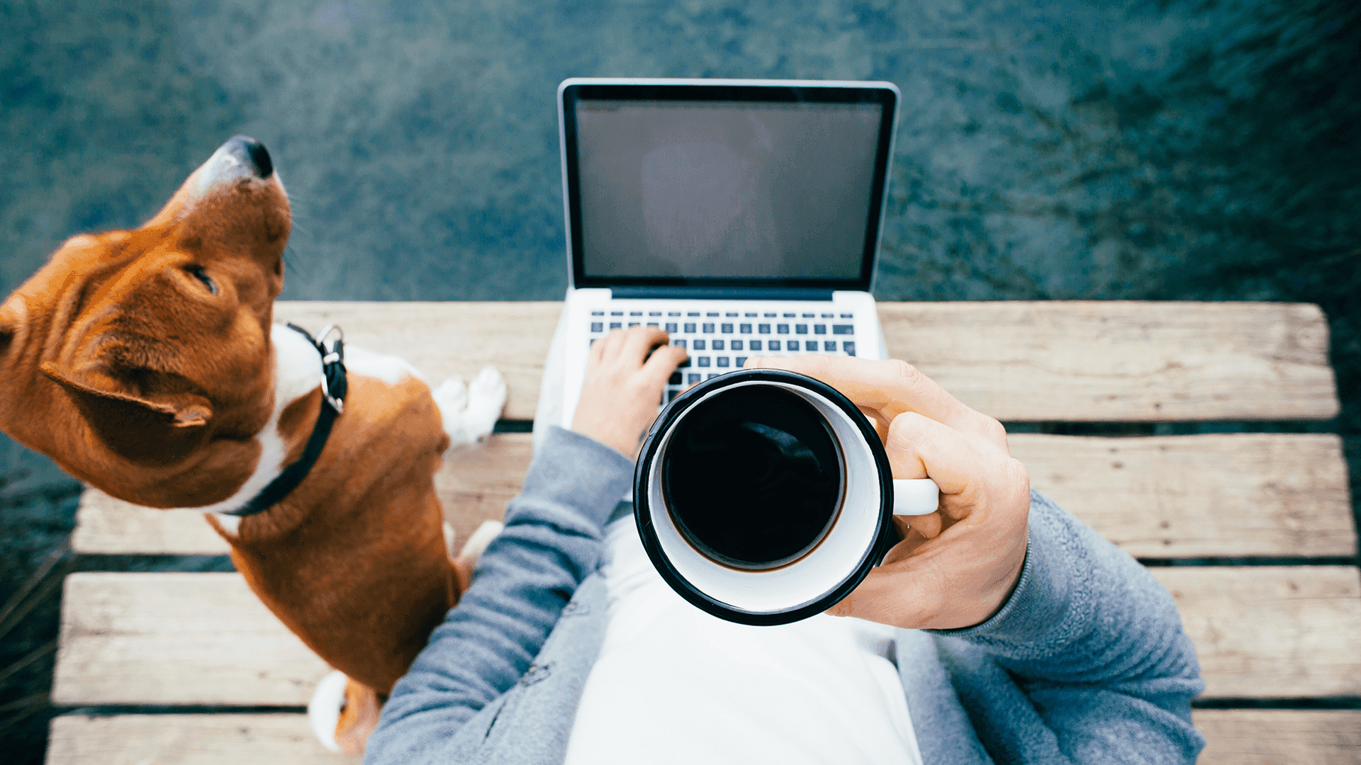 """Work over a cup of coffee - article """"Ordering a video remotely"""""""