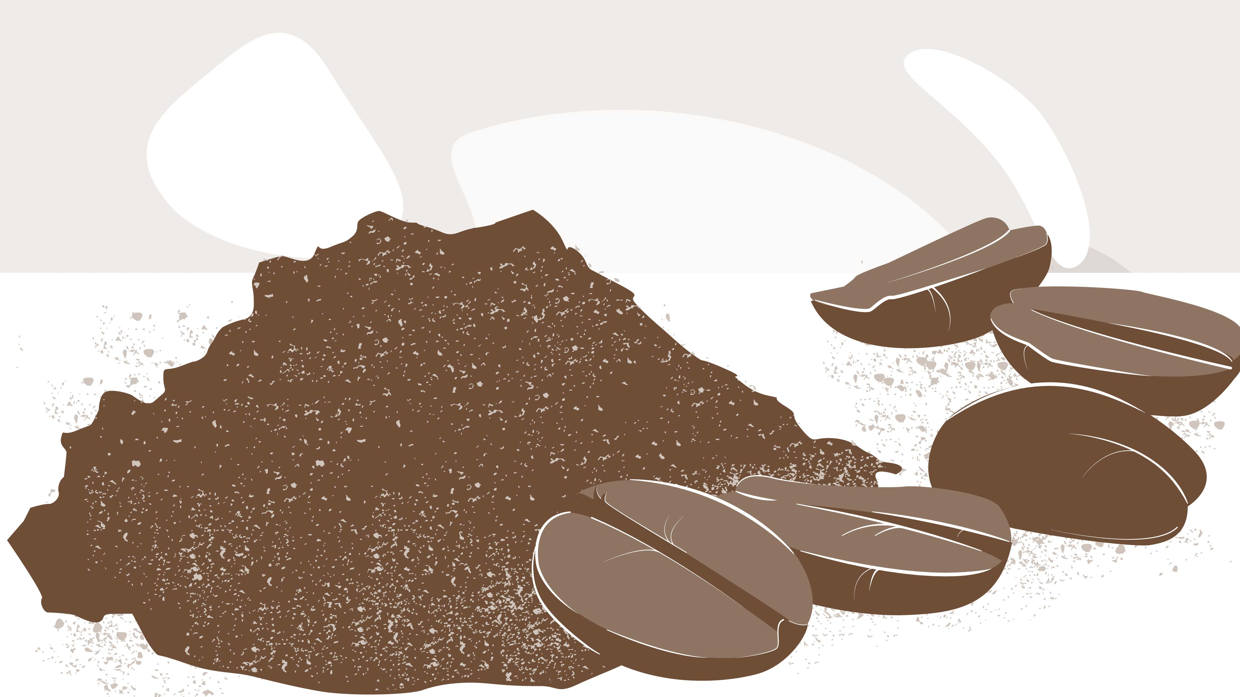 Coffee grounds | 2D Animated Video