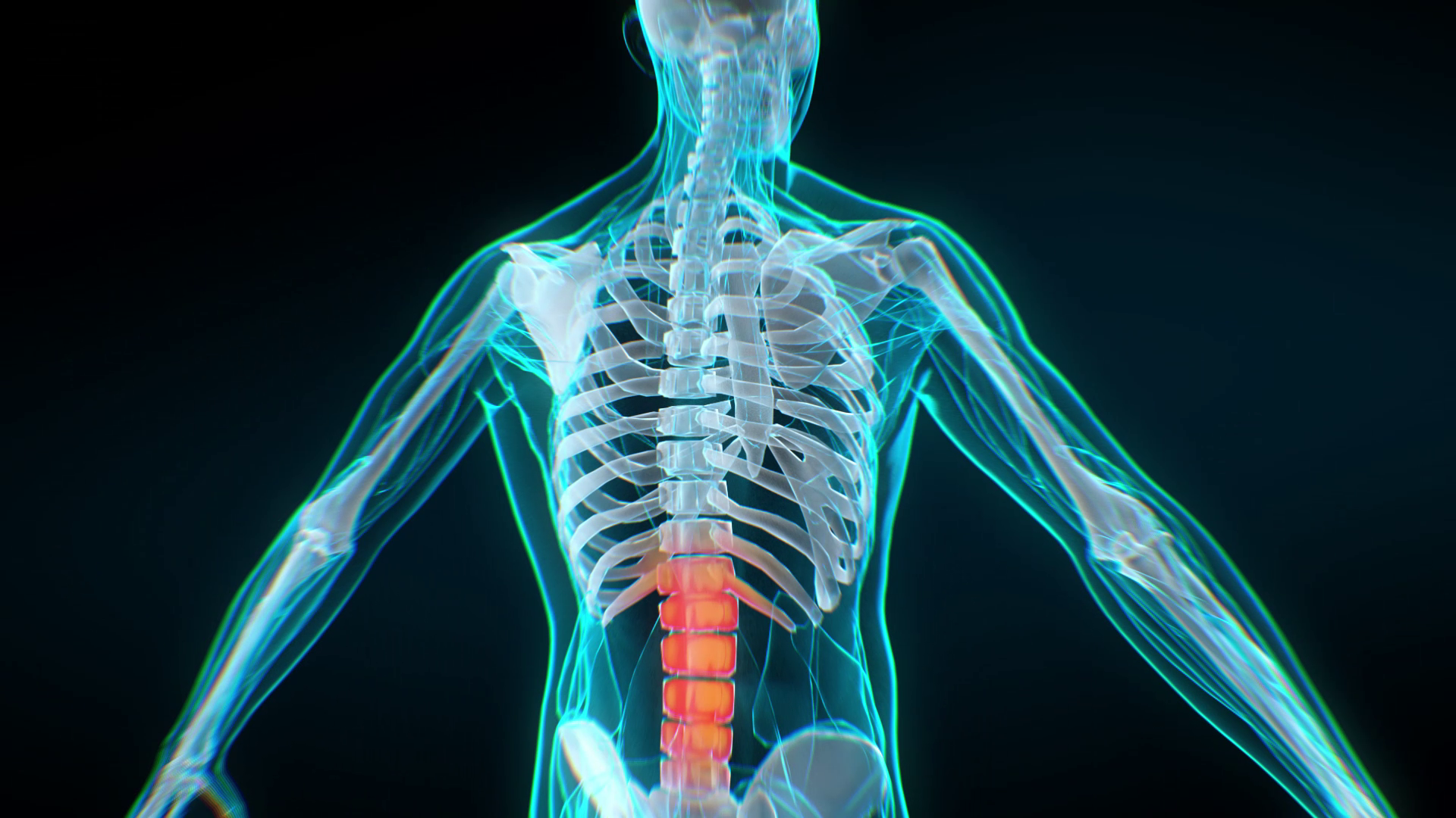 Human skeleton   A Revolutionary Approach to Fast Healing and Recovery