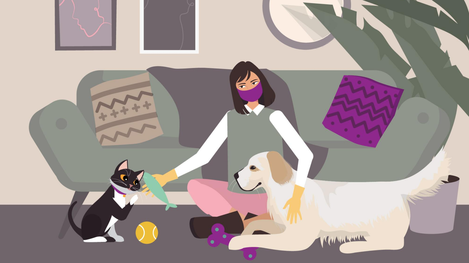 """Advertising Animated Video """"Take care of your pet remotely"""""""