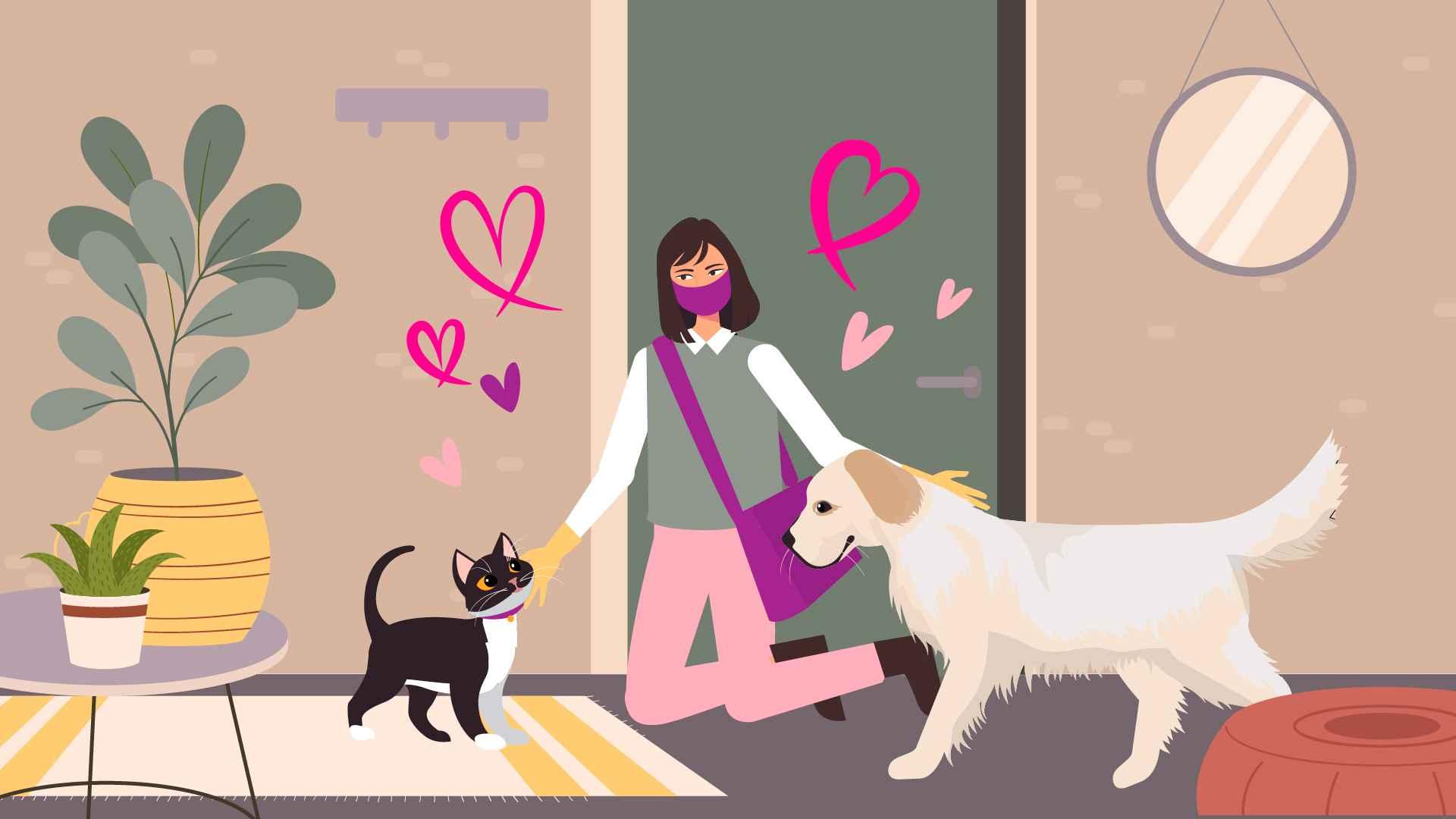 Pet Care in Marketing Video