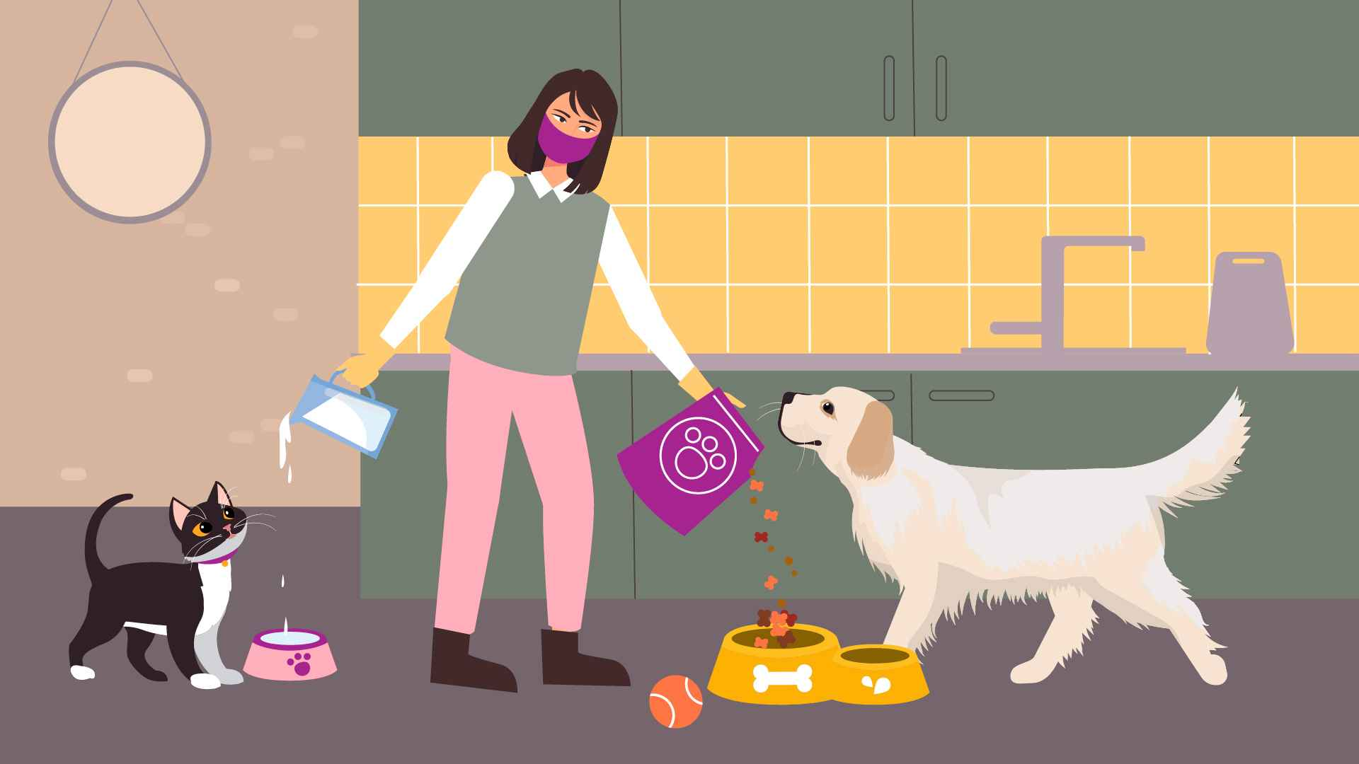 Feeding pets in Animation Video about the service