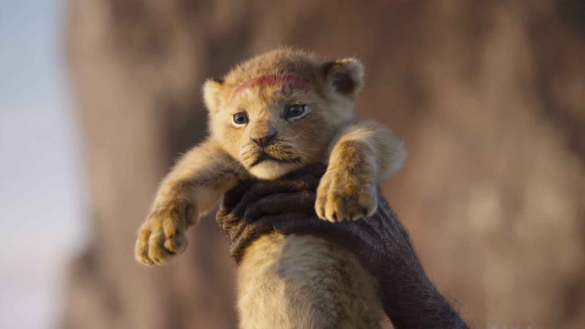 """Cartoon """"Lion King"""" in the article Facts about the best animated films"""
